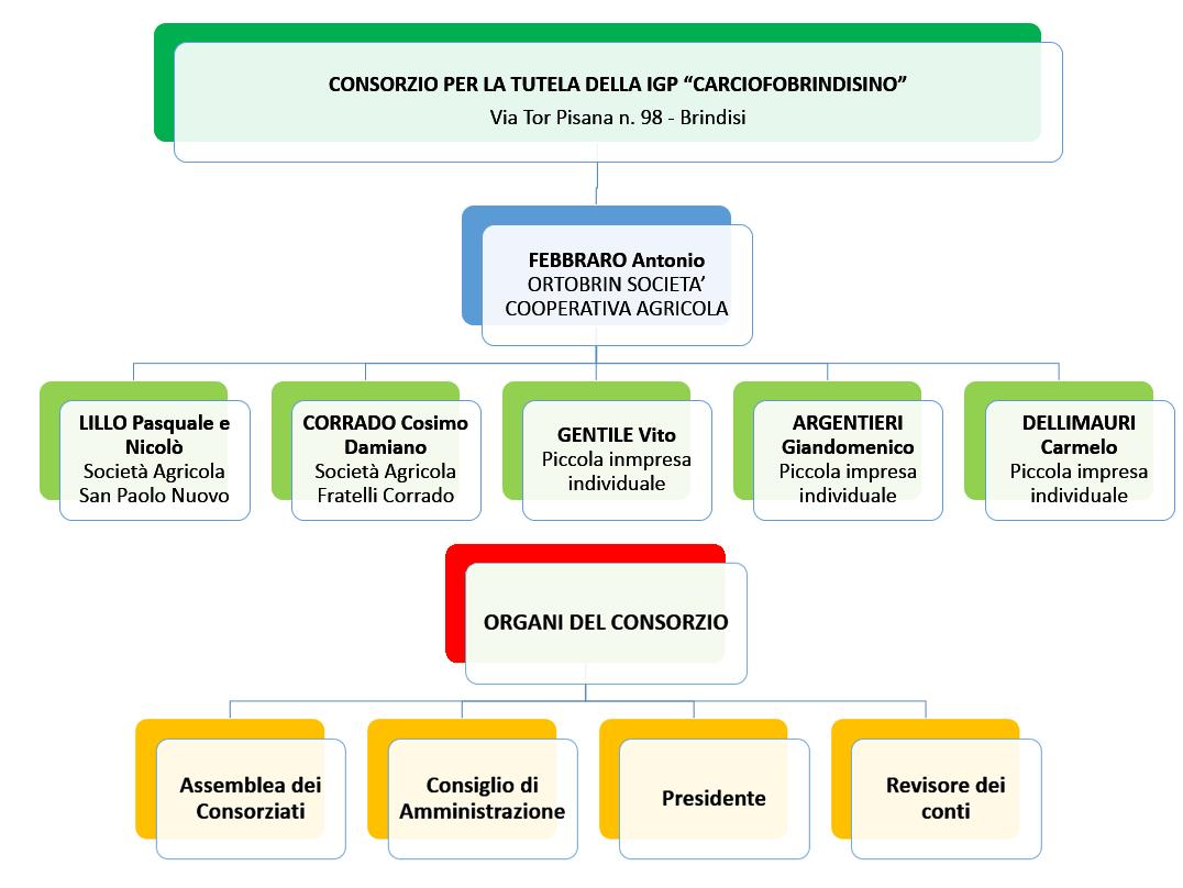 Organigramma-Carciofo